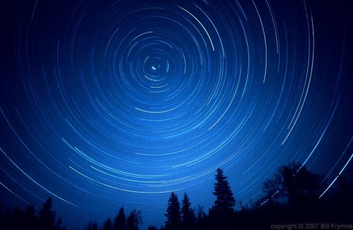star_trail_tree_silhouette_night_sky1